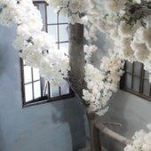 台中婚紗華納婚紗攝影頂級婚紗禮服 (11)