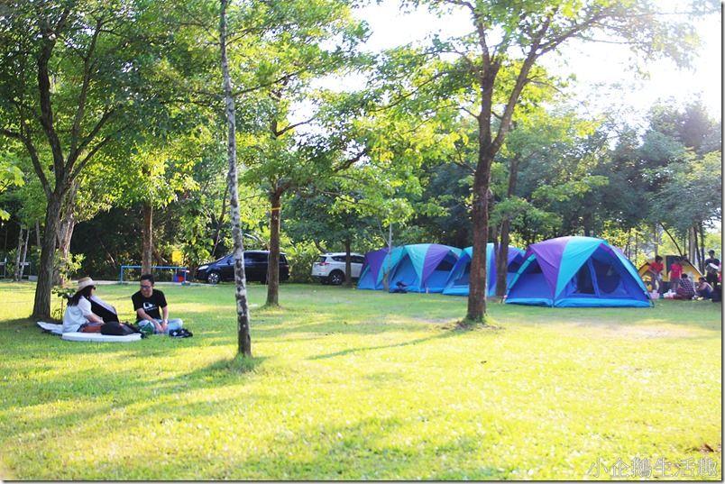 苗栗‧頭屋。景點 【魯冰花農場】走出戶外來場難忘的露營及生態導覽 環湖欣賞明德水庫之美